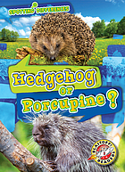 Hedgehog or porcupine?