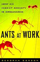 Ants at work : how an insect society is organized