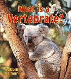 What is a vertebrate?