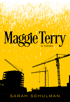 Maggie Terry : a novel