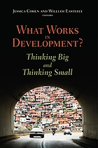 What works in development? : thinking big and thinking small