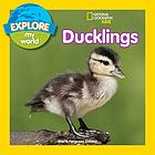 Explore my world: ducklings.