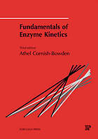 Fundamentals in enzyme kinetics