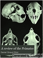 A review of the primates.