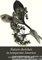 Nature sketches in temperate America : a series of sketches and popular account of insects, birds, and plants, treated from some aspects of their evolution and ecological relations