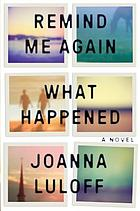 Remind me again what happened : a novel