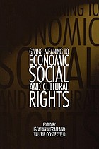 Reaching beyond words : giving meaning to economic, social, and cultural rights