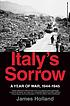Italy's sorrow : a year of war, 1944-1945 by  James Holland