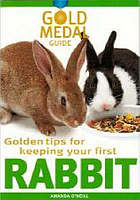 Golden tips for keeping your first rabbit
