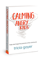 Calming angry kids : help and hope for parents in the whirlwind